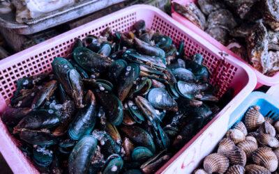 Decreto 349/020 – Ministerio de Industria, Energía y Minería – Pescados, Moluscos y Crustáceos Glaseados